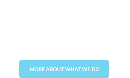 More About What We Do